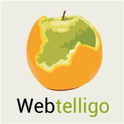 Logo van Webtelligo